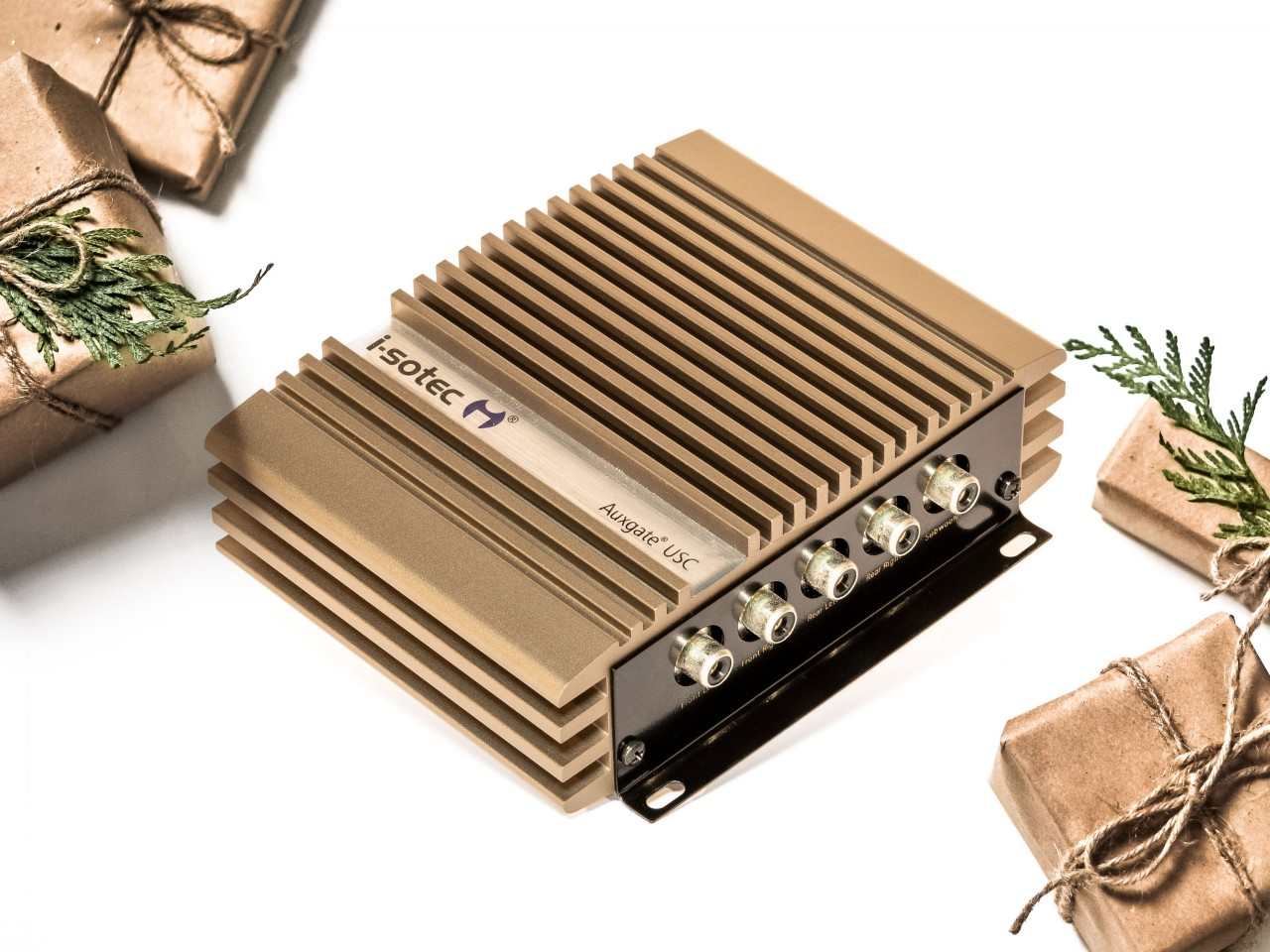 Auxgate USC | Hi-Lo-Converter mit Auxinput | für Car-Audio-Endstufen